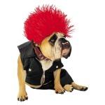 Target Dog Costume